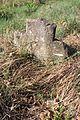 Gradsko groblje u Gornjem Milanovcu, stari deo 39.jpg
