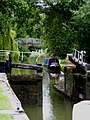 Grand Union Canal at Berkhamsted - geograph.org.uk - 1451309.jpg