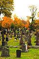 Graveyard in Oslo.jpg