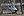 Grus nigricollis -Bronx Zoo-8.jpg