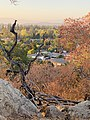 Guadalupe Oak Grove Park - Hill Top View.jpg