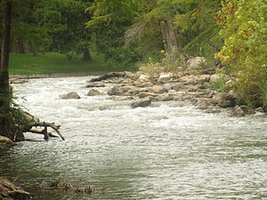 Guadalupe River (Texas) - Image: Guadalupe River in Gruene, TX IMG 5522