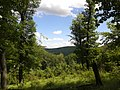 Hárs tető után a zöld jelzésen - panoramio.jpg