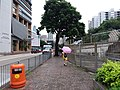 HK 九龍城 Kowloon City 何文田 Ho Man Tin 公主道 Princess Margaret Road June 2019 SSG 65.jpg