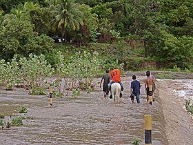 HN049sA-Jra flood+hors.jpg