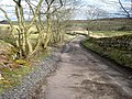 Hadrian's Cycleway at Vindolanda - geograph.org.uk - 764893.jpg