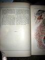 Haeckel Discomedusae 8 text2.JPG