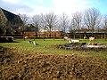 Haggerston, Hackney City Farm - geograph.org.uk - 1716472.jpg