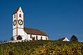 Hallau-Kirche-St-Moritz.jpg