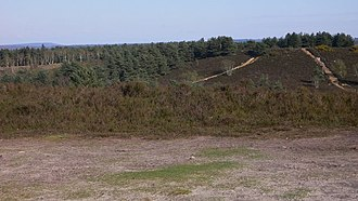 August Sangret - Hankley Common. Joan Wolfe lived in two separate wigwams constructed by August Sangret on this common between July and August, 1942