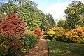 Harris Garden Autumn Bank.JPG