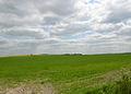 Harwell Field SE - geograph.org.uk - 8923.jpg