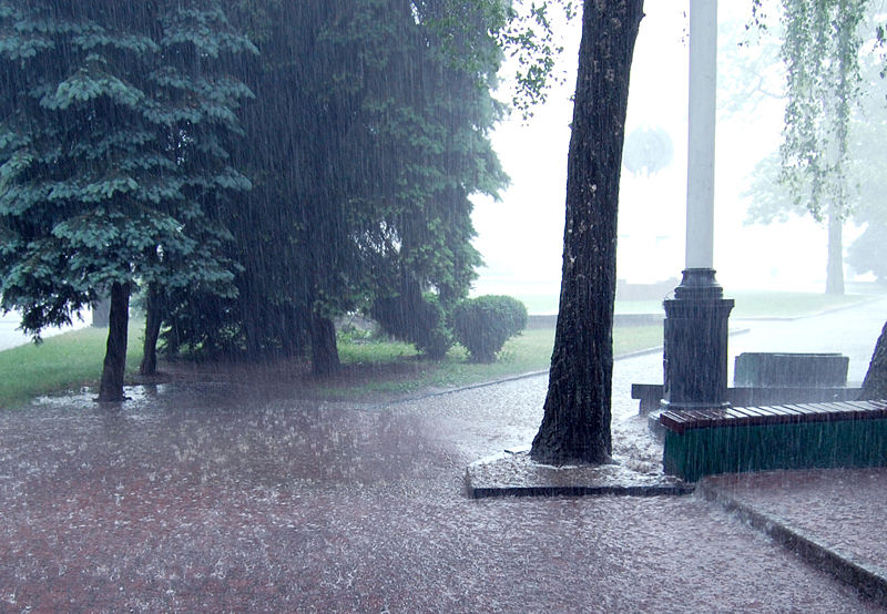 پرونده:Heavy Rain.jpg
