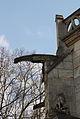 Herblay Saint-Martin 578.JPG