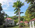 Hermitage Plantation Inn, Nevis - panoramio (3).jpg