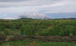 Highgate Common - geograph.org.uk - 13068.jpg