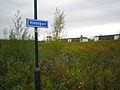 Hoonpad Houten Nederland.JPG