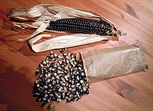 Hopi Blue Corn.jpg