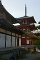 Horinji08s3s3900.jpg