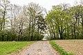 Horn-Bad Meinberg - 2015-04-25 - LIP-027 Wiembecketal (20).jpg
