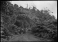 Horse-drawn wagonette on the West Coast Road, North Auckland ATLIB 285625.png