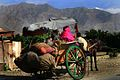 Horse and cart, Afghanistan.jpg