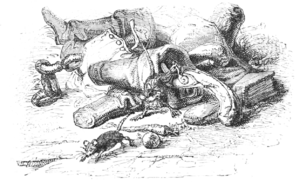 Hudibras, 1859 - Illustration - v1 p40.png
