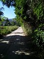 Huelquen, Paine, Chile - panoramio.jpg