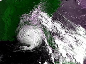 Hurricane Erin (1995) - Image: Hurricane Erin AVHRR High res