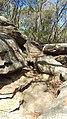 IMAG0241 rocks.jpg