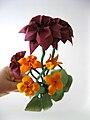 Ikebana 2.jpg