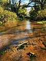 Il fiume Cremera alla Valle del Sorbo.jpg