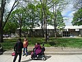 Images taken out a west facing window of TTC bus traveling southbound on Sherbourne, 2015 05 12 (77).JPG - panoramio.jpg