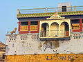 India-5390 - Flickr - archer10 (Dennis).jpg