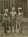 India and Malaysia (1892) (14582765458).jpg