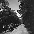 Inleveren van wapens door de Duitsers Wapens op weg naar het wapendepot in Soes, Bestanddeelnr 900-3040.jpg