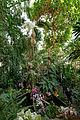 Interior main greenhouse Jardin des Plantes 2013-03-15 n01.jpg