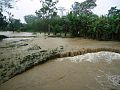 Inundaciones en Costa Rica, octubre de 2011 (16).jpg