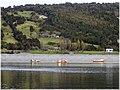 Isla Queullin, Comuna de Calbuco. (2315787016).jpg