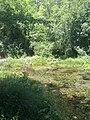 Izvor Ribnika - panoramio.jpg
