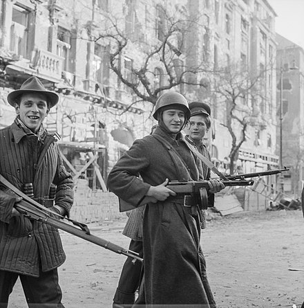Hungarian revolutionaries, beginning of November 1956