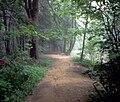 Jacobsburg EEC Trail DCNR.jpg