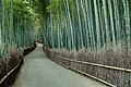Japan The Bamboo Forest (13914447656).jpg