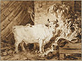 Jean-Honoré Fragonard - White Bull and a Dog in a Stable - Google Art Project.jpg