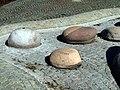 Jeder Stein ein Ortsteil - panoramio.jpg
