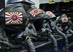 Joint Helmet Mounted Cueing System with Samurai Wood Merchants patch.JPG