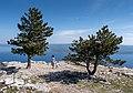 Jules and Gabriel at the Vidova Gora viewpoint, Croatia (PPL1-Corrected) julesvernex2.jpg