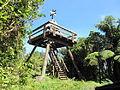 Kakepuku summit lookout tower.JPG