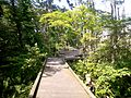 Karinba shizen park03.jpg