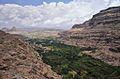 Kat Valley, Yemen (15632486593).jpg